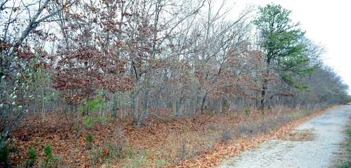 Suffolk County wants to turn 55 acres of