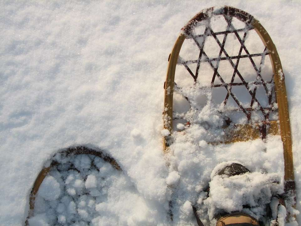 If you're bored with sledding, you may want