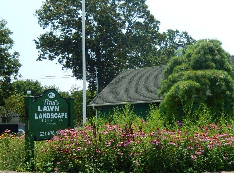 Paul's Lawn & Landscape Services and Christmas Tree