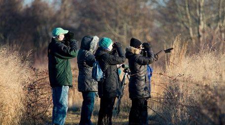 Volunteers record bird sightings at the Seatuck National