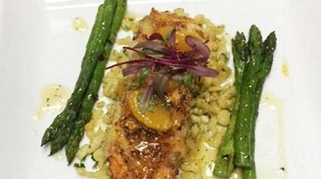 Grilled sweet potato-crusted Scottish salmon, served with toasted