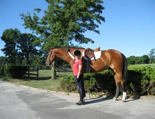 Reader Liz Smith of Centerport with her horse