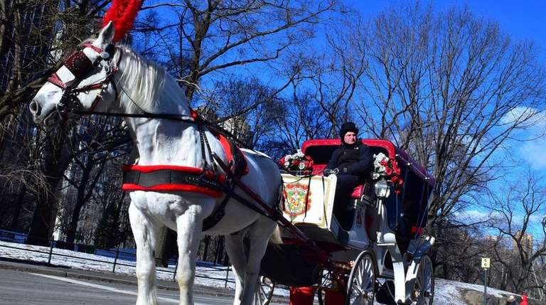 A horse drawn carriage exits Central Park, Monday,