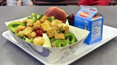 A healthy chicken salad school lunch, prepared under