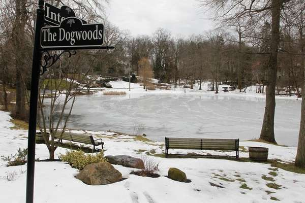 Black Ink Pond in Roslyn Estates in February