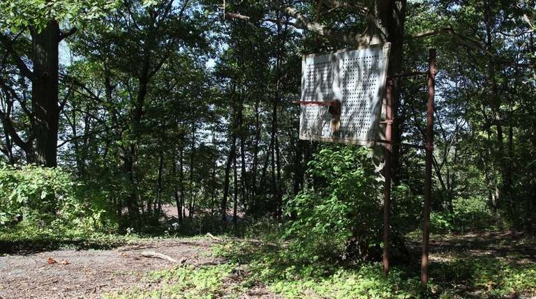 Alvan O Petrus Park, shuttered for years, the