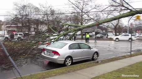High winds and rain caused tree branches and