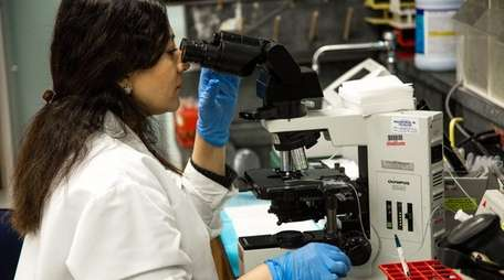A lab technician looking under a microscope at
