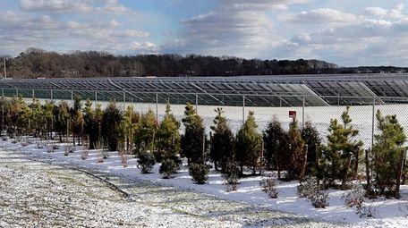 A solar farm located on a portion of