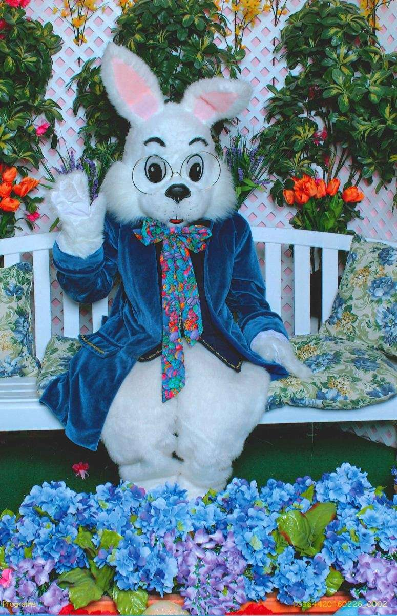 Spend time with the Easter Bunny at Walt