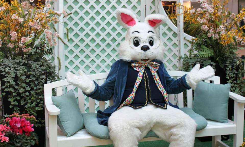 Families can meet the Easter Bunny daily in