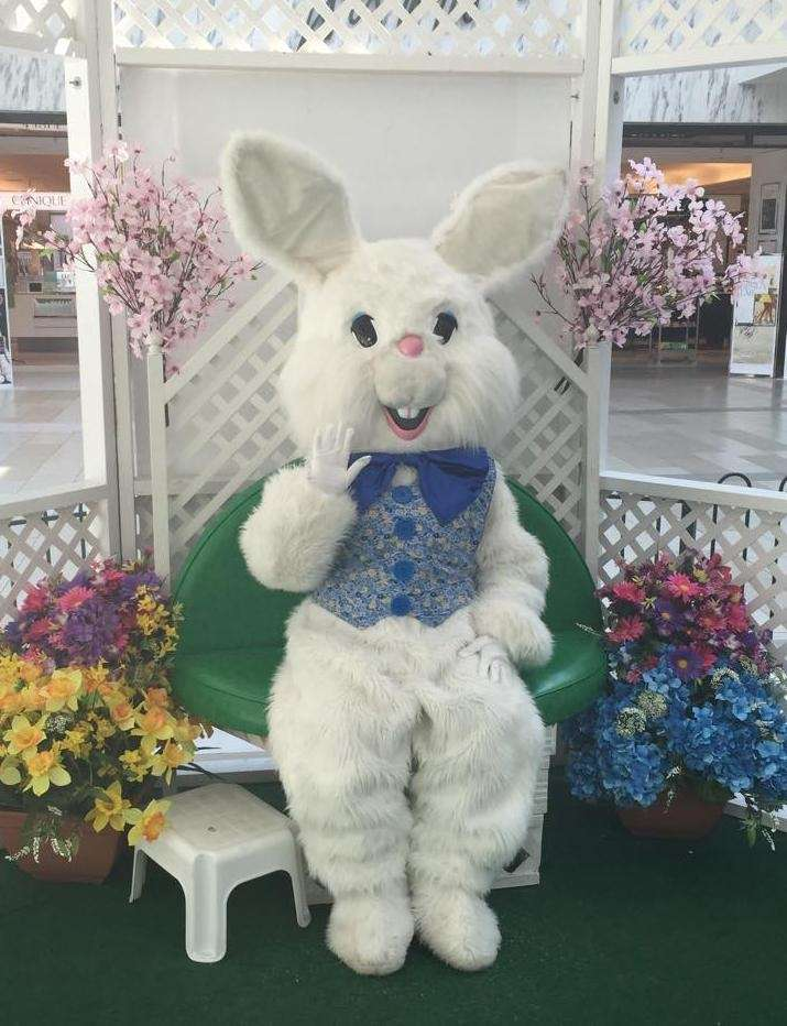 The Easter Bunny will be at Westfield South