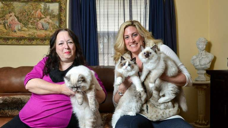 Show cat breeders Jane Harmon, left, and Christine