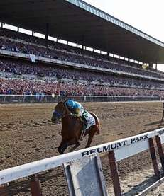 You've been to Belmont Park, even if it