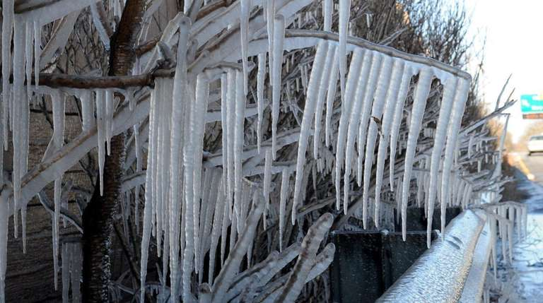 Icicles form on tree branches and a guardrail
