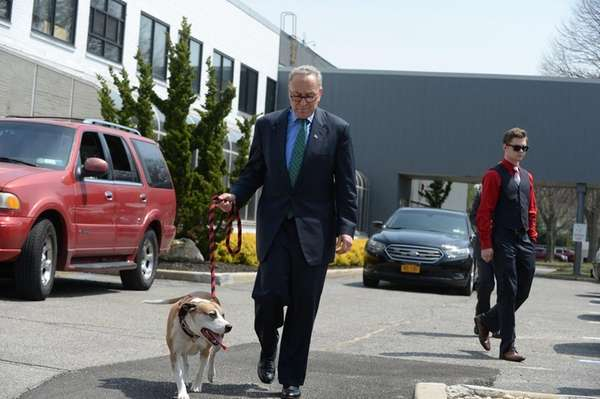 U.S. Senator Charles E. Schumer walks with a