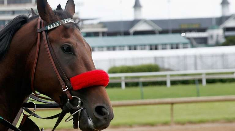 Kentucky Derby pick: Why Newsday's Ed McNamara is taking Nyquist