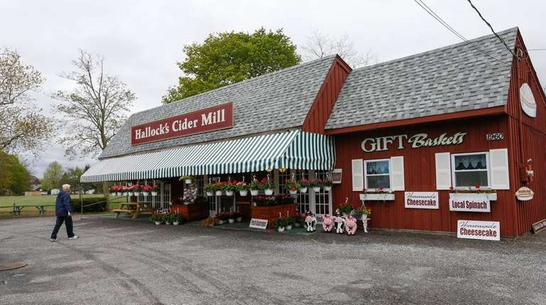 Hallock's Cider Mill in Laurel sells the fruits,