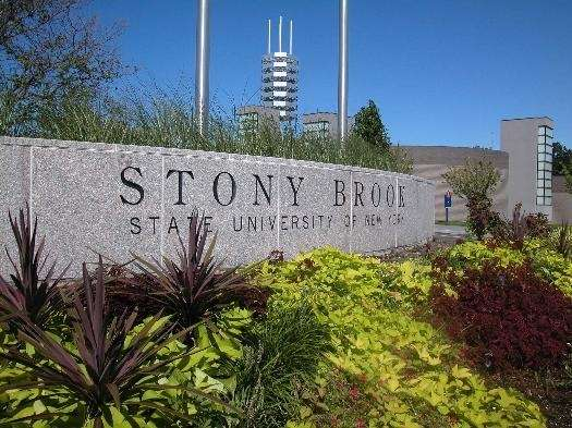 A Stony Brook University student was hospitalized after