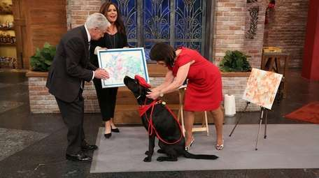 Dagger II, the painting dog from Massapequa, is