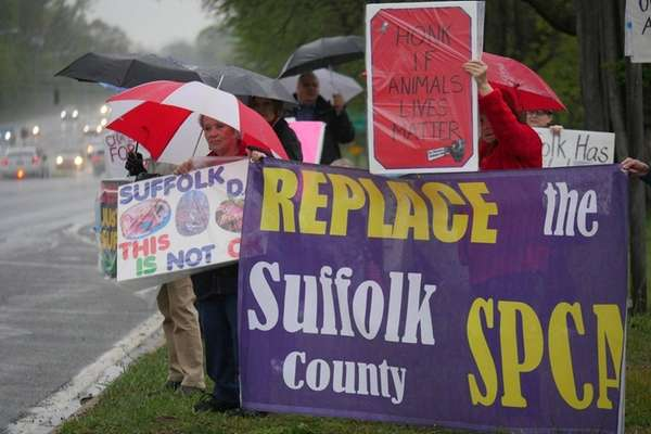 Animal activists who claim the Suffolk County SPCA