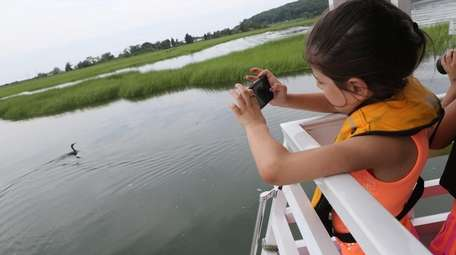 The Discovery Wetlands Cruises teach the importance and