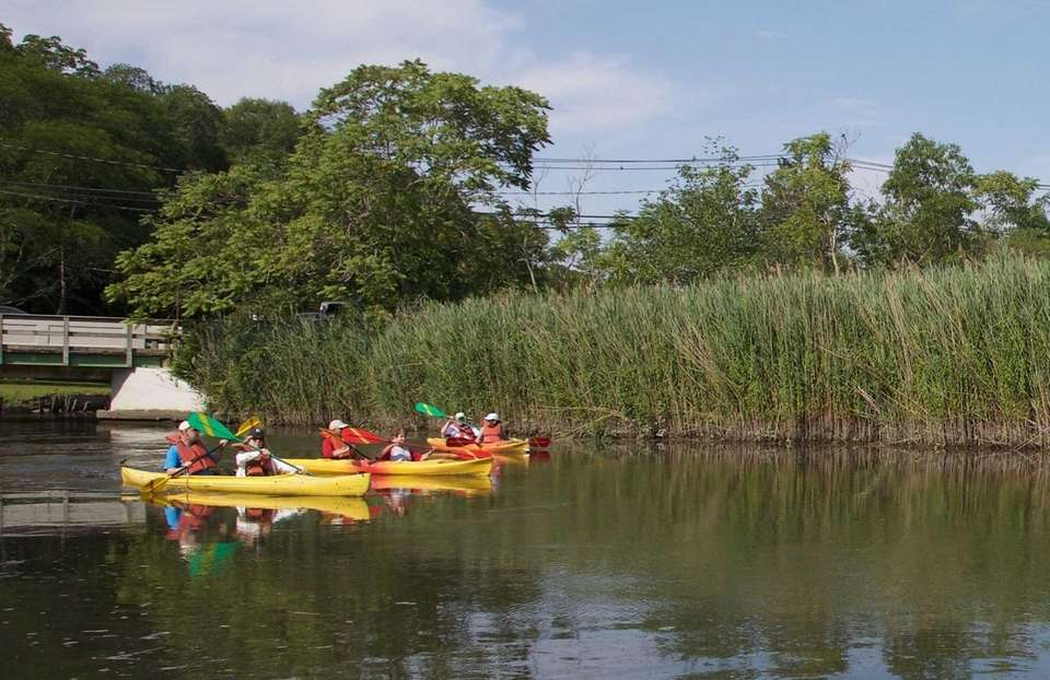 People paddle along the Nissequogue River in Smithtown,