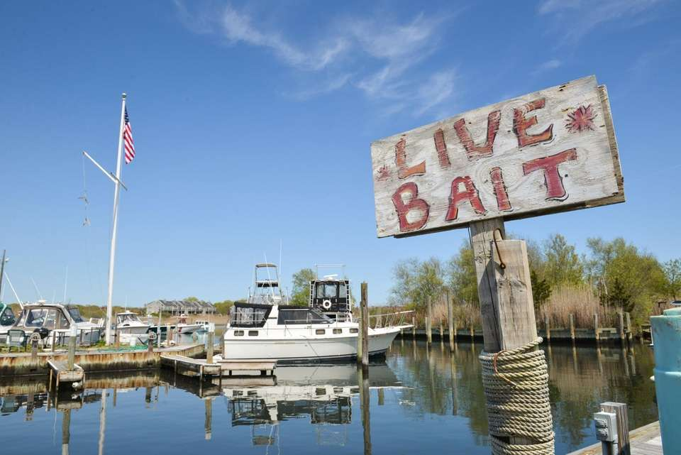 Swezey's Harts Cove Marina offers boaters a travelift