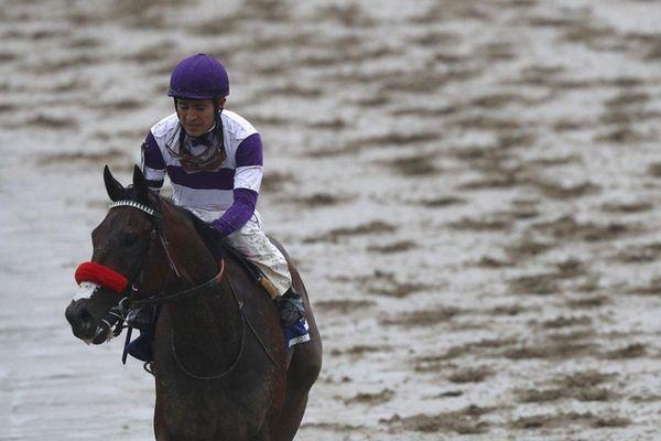 Mario Gutierrez, jockey of Nyquist, looks on after