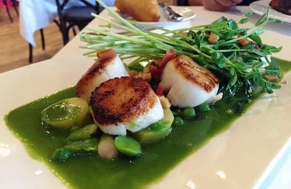 Seared scallops with fava beans, spring peas, pickled