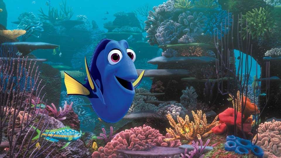 Even though Dory was already designed for