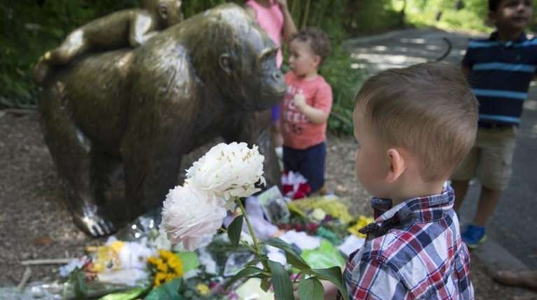 A boy brings flowers to put beside a