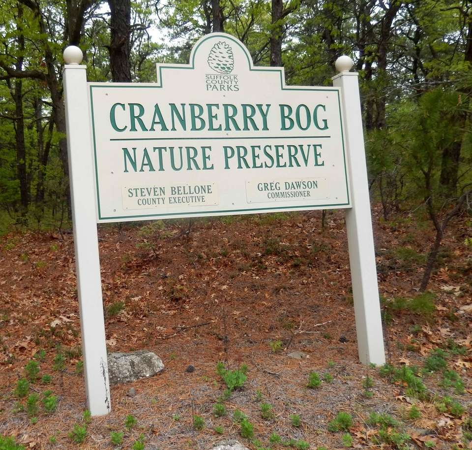 CRANBERRY BOG COUNTY PRESERVE, Riverhead-Moriches Road, Riverhead, 631-854-4949,