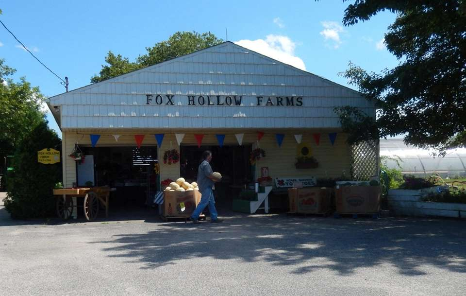 Rottkamps Fox Hollow Farm in Baiting Hollow, June