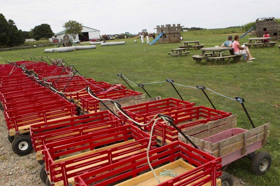 Windy Acres Farm in Calverton has a farm