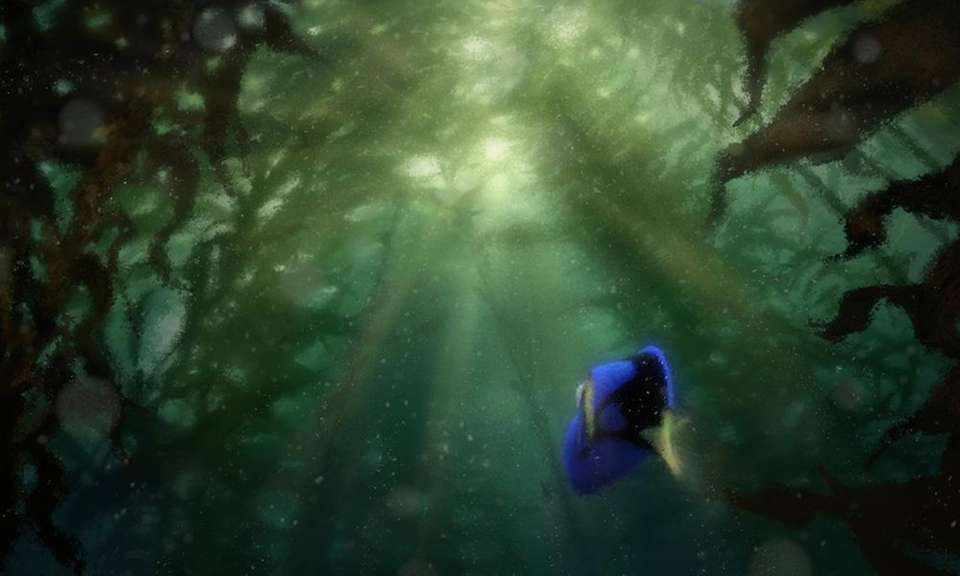 The Kelp Forest in the movie is murky,
