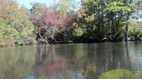 Brookhaven Town's new law requires upgraded sewage treatment
