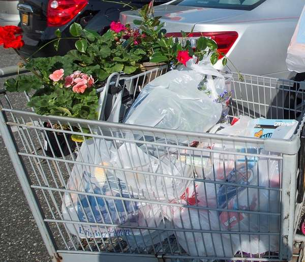 A shopping cart filled with plastic bags full