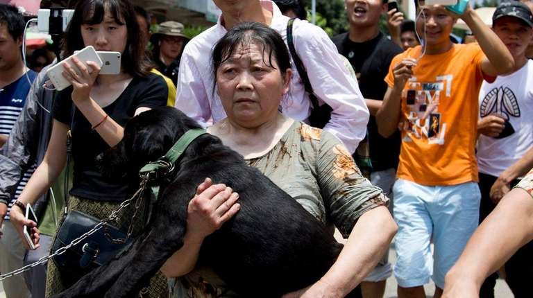 An animal rights activist, center, carries a dog