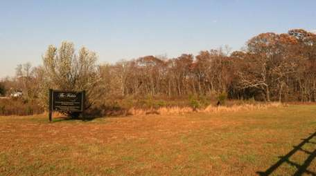This 31-acre parcel has a wooded section that