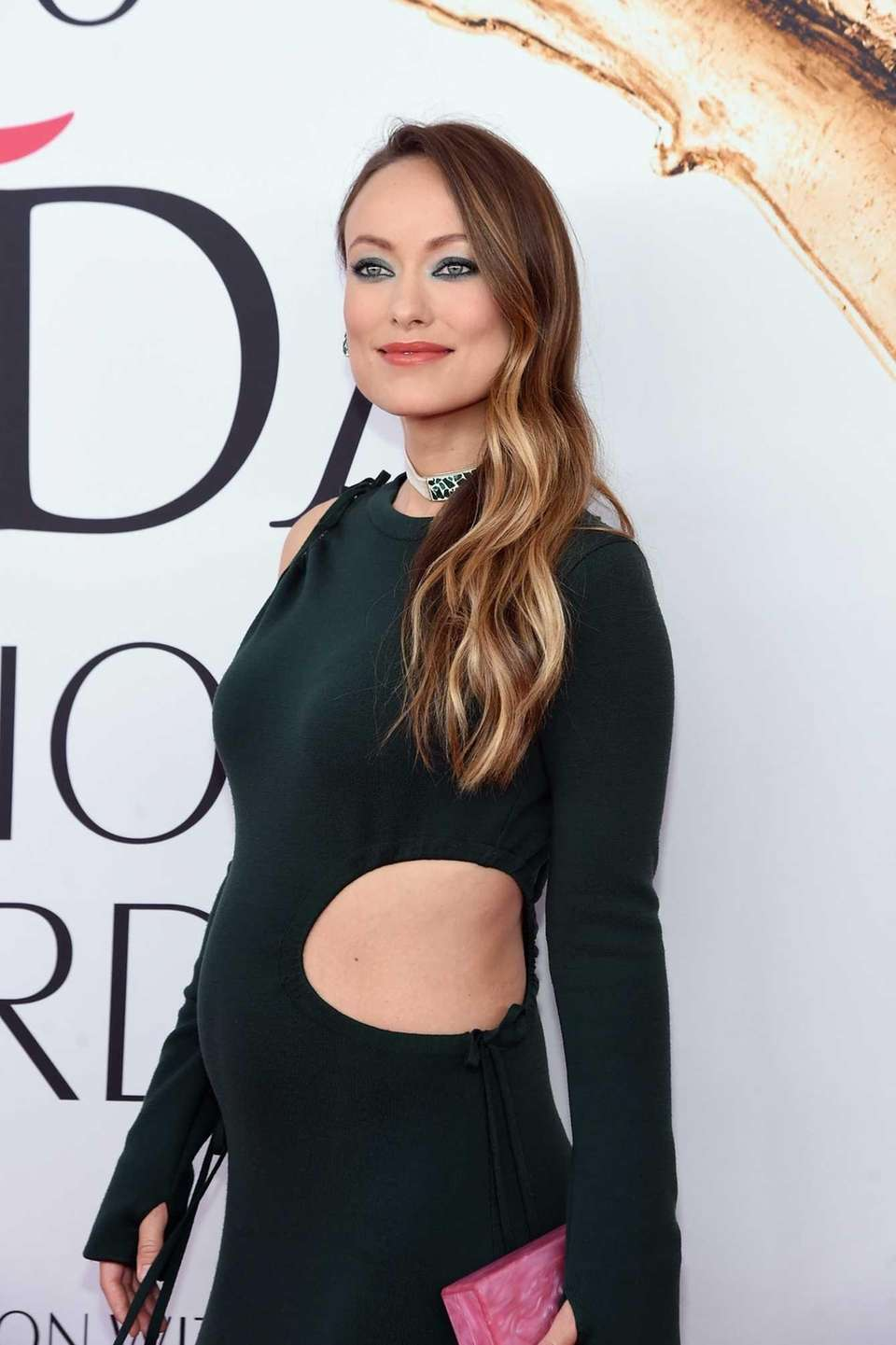 Actress Olivia Wilde expressed her support for Hillary