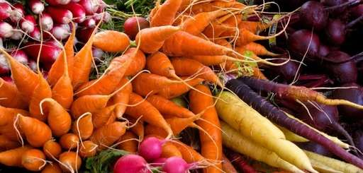 Vegetables like these can be planted again in