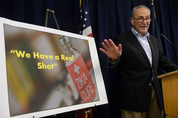 Sen. Charles Schumer calls on members of Congress
