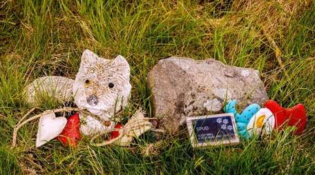 The gravestone for a dog at a pet