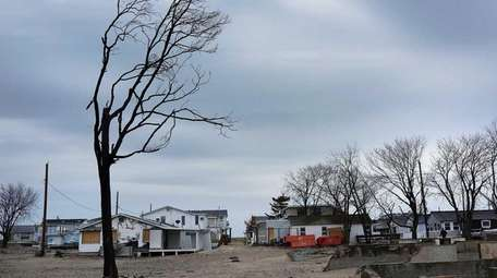 A charred tree is viewed on April 29,