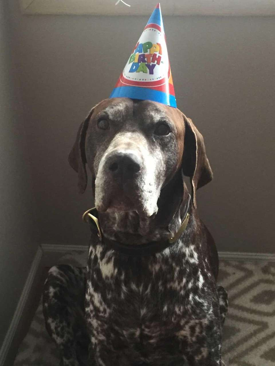 Celebrating SAMs 12th birthday
