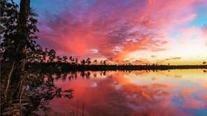 This is Everglades National Park at sunset. Posted