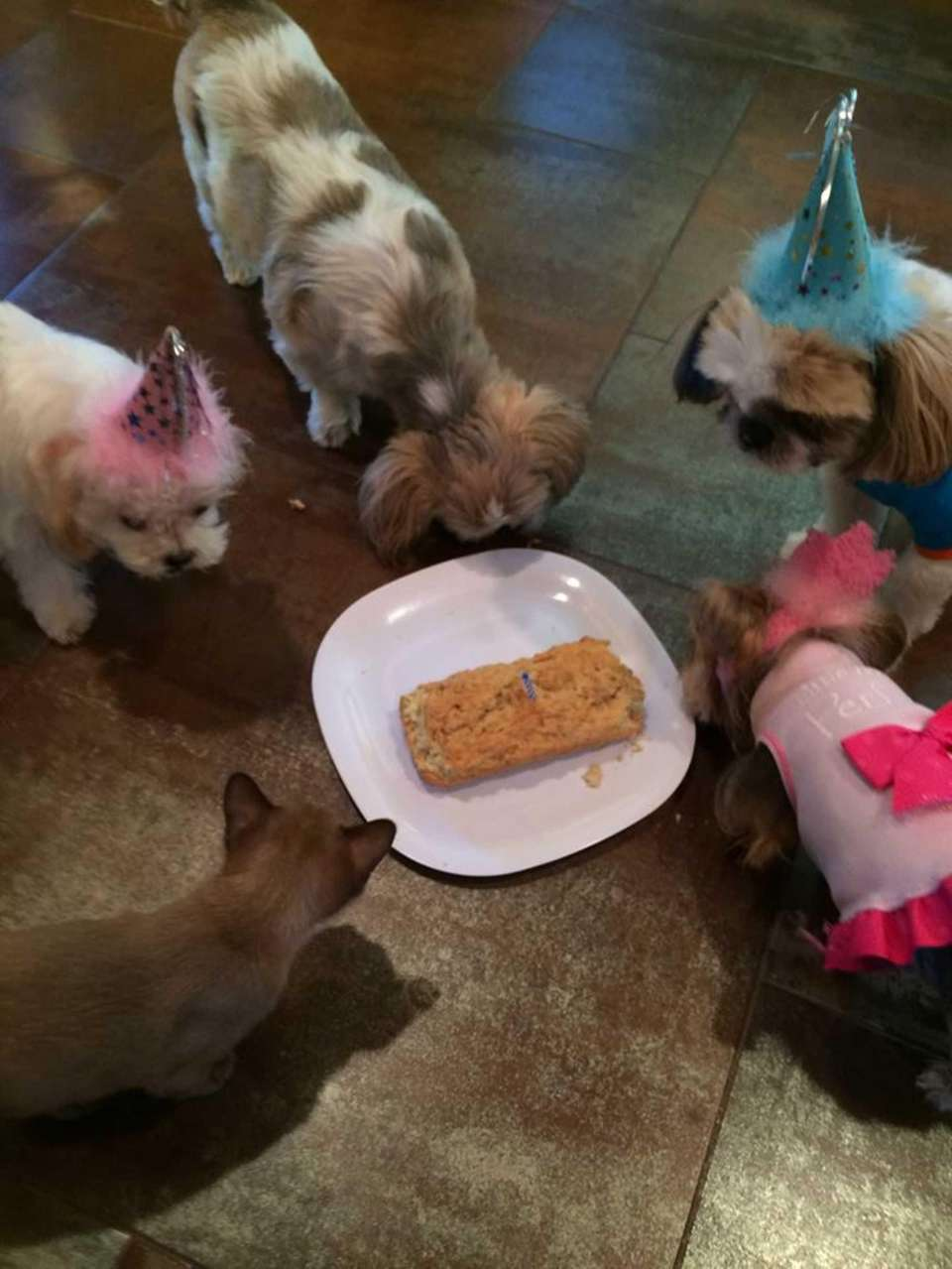 Marlee's birthday party!