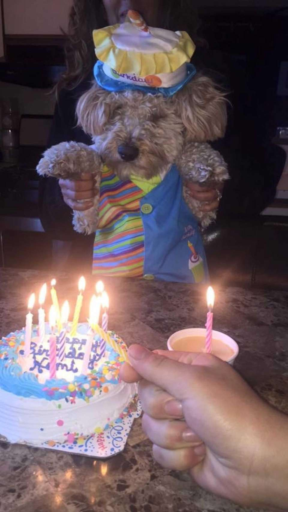 Hemi's 2nd Birthday XO