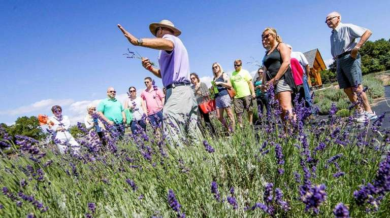 Participants in the North Fork Foodie Tour get